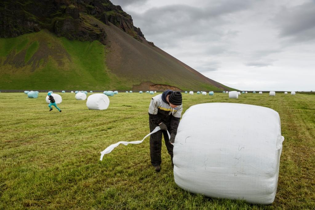 Nordregio: Unga islänningar vill inte jobba inom traditionella yrken